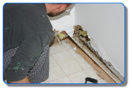 Image-Water Damage - Water Restoration - Serving:  Corte Madera, Fairfax, Kentfield, Larkspur, Lagunitas, Mill Valley, Novato, Petaluma, Ross, San Anselmo, San Francisco Bay Area, Sausalito, and Tiburon, California.
